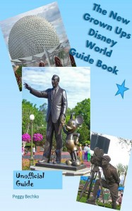 Disney World Guide Book Final Cover